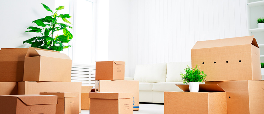 pr parer mon d m nagement cogolin site officiel de la mairie. Black Bedroom Furniture Sets. Home Design Ideas